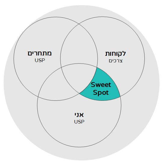 אסטרטגיית פרסום דיגיטלית